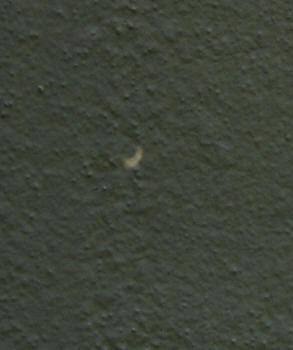 so-net金環日食-2.jpg
